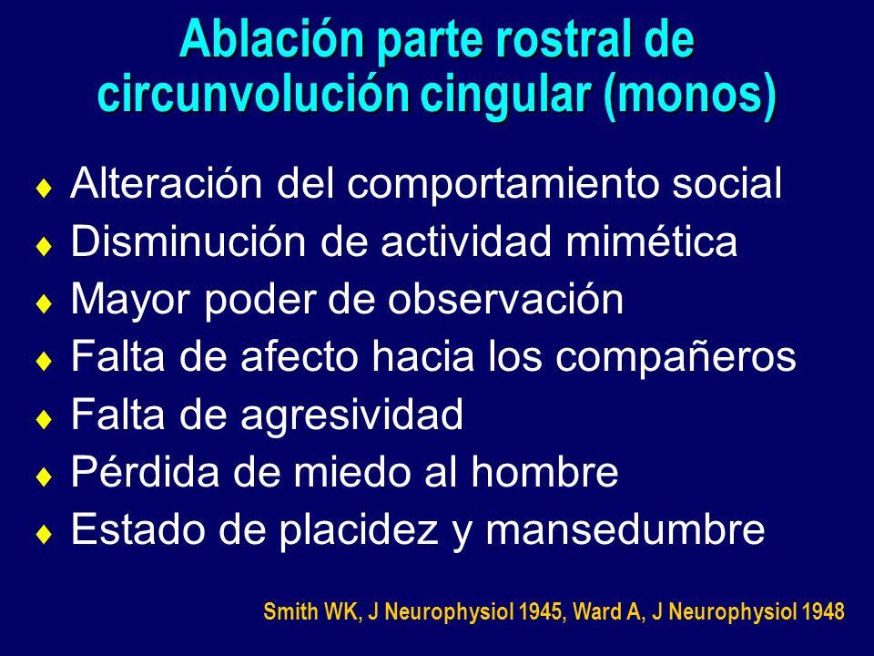 Ablación parte rostral de circunvolución cingular (monos) Alteración del comportamiento social Disminución de actividad mimética Mayor poder de observ