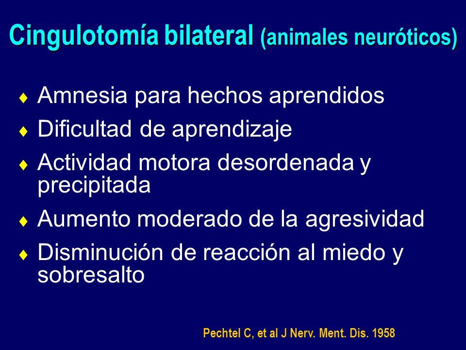 Cingulotomía bilateral (animales neuróticos) Amnesia para hechos aprendidos Dificultad de aprendizaje Actividad motora desordenada y precipitada Aumen