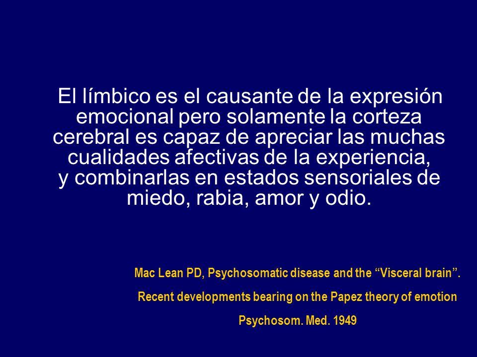 El límbico es el causante de la expresión emocional pero solamente la corteza cerebral es capaz de apreciar las muchas cualidades afectivas de la expe