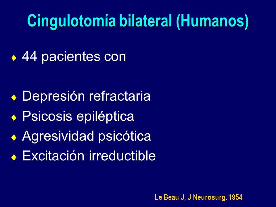 Cingulotomía bilateral (Humanos) 44 pacientes con Depresión refractaria Psicosis epiléptica Agresividad psicótica Excitación irreductible Le Beau J, J