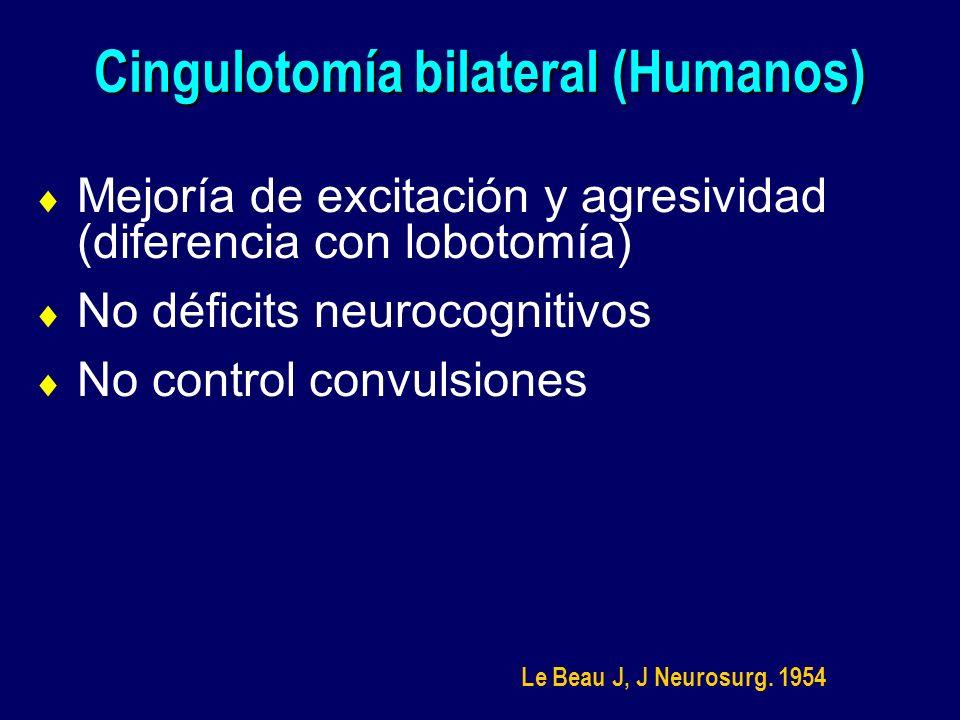Cingulotomía bilateral (Humanos) Mejoría de excitación y agresividad (diferencia con lobotomía) No déficits neurocognitivos No control convulsiones Le