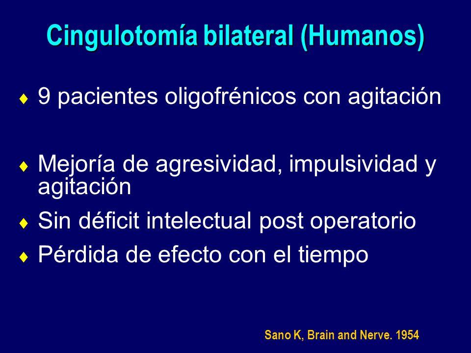 Cingulotomía bilateral (Humanos) 9 pacientes oligofrénicos con agitación Mejoría de agresividad, impulsividad y agitación Sin déficit intelectual post