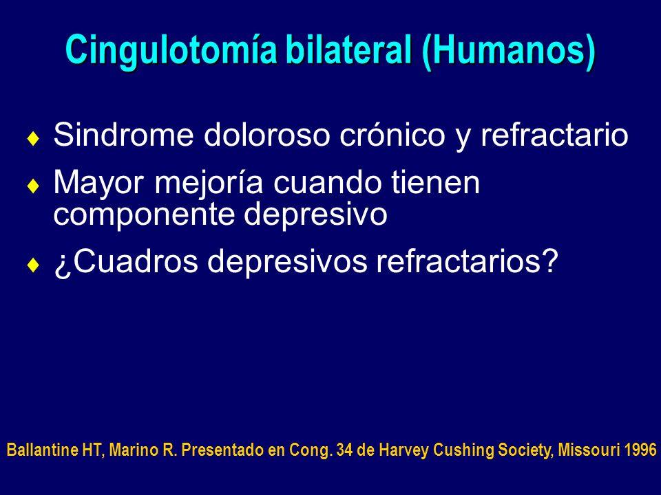 Cingulotomía bilateral (Humanos) Sindrome doloroso crónico y refractario Mayor mejoría cuando tienen componente depresivo ¿Cuadros depresivos refracta