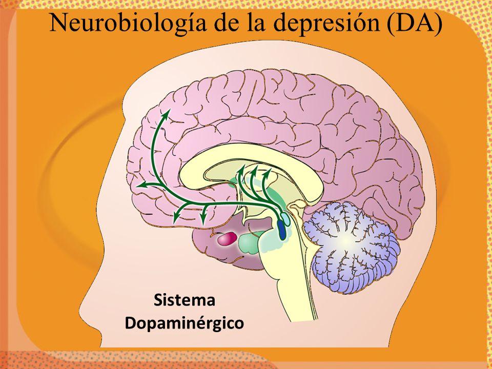 Sistema Dopaminérgico Neurobiología de la depresión (DA)
