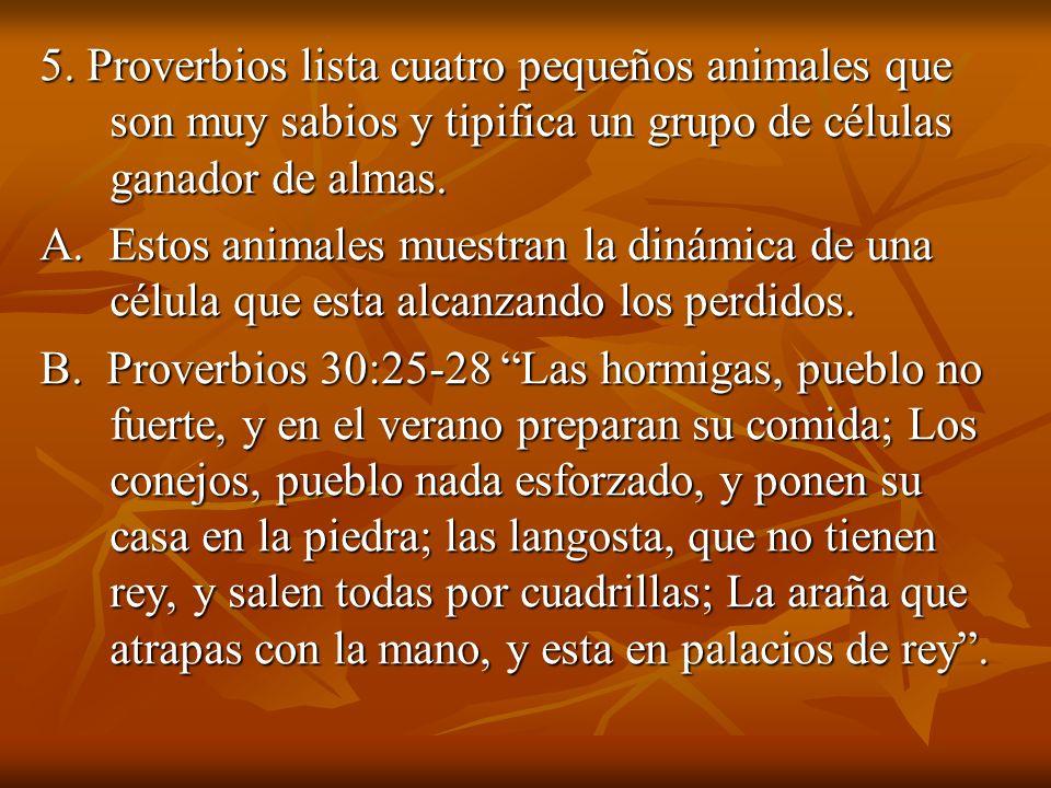 5. Proverbios lista cuatro pequeños animales que son muy sabios y tipifica un grupo de células ganador de almas. A. Estos animales muestran la dinámic