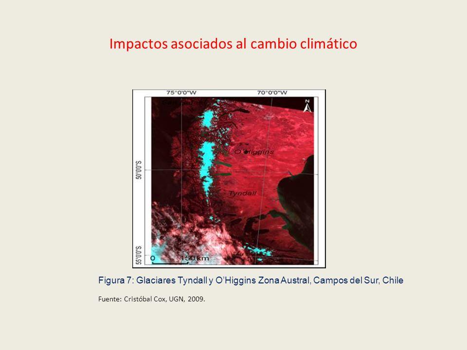 Impactos asociados al cambio climático Figura 7: Glaciares Tyndall y OHiggins Zona Austral, Campos del Sur, Chile Fuente: Cristóbal Cox, UGN, 2009.
