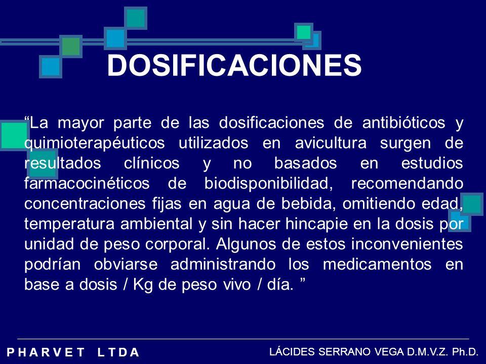ANTIMICOPLASMICOS CONCLUSION: Los agentes con una buena biodisponibilidad oral, conocida farmacocineticamente permiten la administracion en el alimento, pero debe aumentarse la dosis con relacion a la recomendada en la medicacion pulsatil en el agua, en un 20% para contrarrestar la reduccion en biodisponibilidad por el prolongado pasaje.
