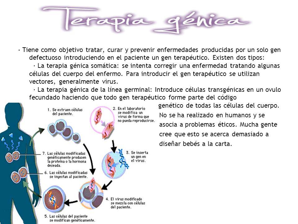 - Tiene como objetivo tratar, curar y prevenir enfermedades producidas por un solo gen defectuoso introduciendo en el paciente un gen terapéutico. Exi