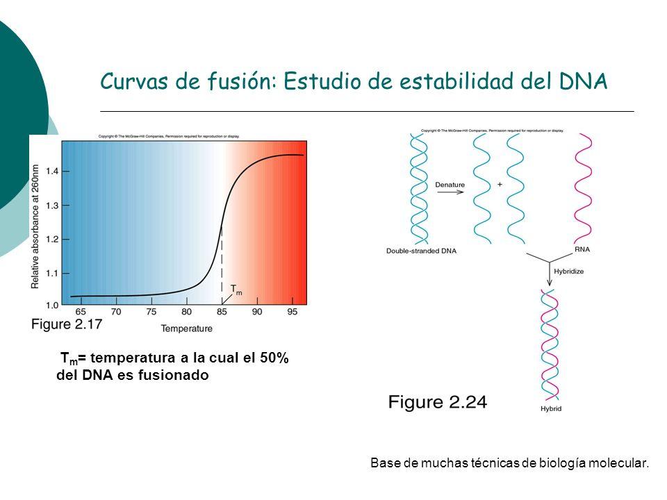Curvas de fusión: Estudio de estabilidad del DNA T m = temperatura a la cual el 50% del DNA es fusionado Base de muchas técnicas de biología molecular