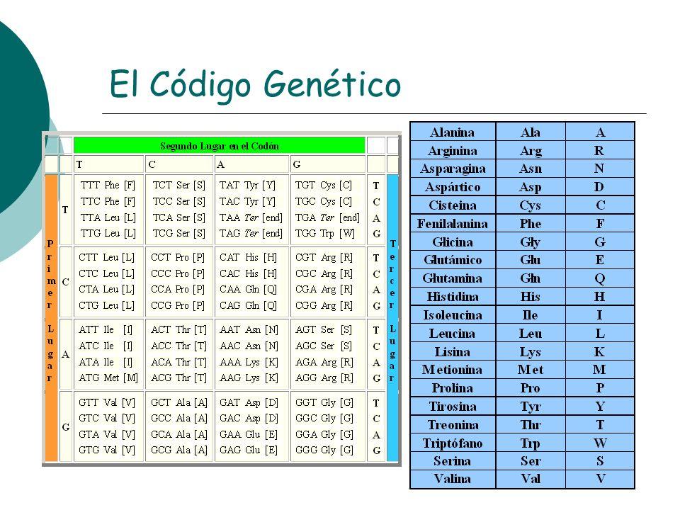 El Código Genético