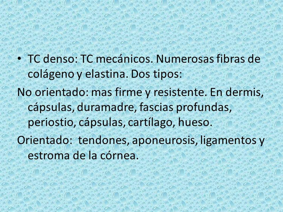 TC denso: TC mecánicos. Numerosas fibras de colágeno y elastina. Dos tipos: No orientado: mas firme y resistente. En dermis, cápsulas, duramadre, fasc
