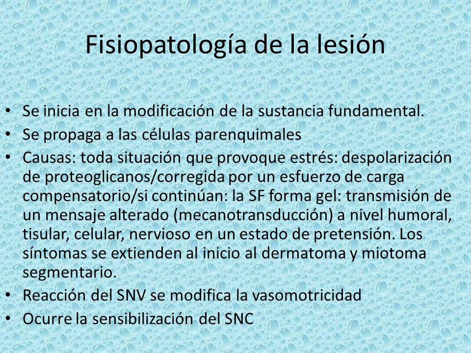 Fisiopatología de la lesión Se inicia en la modificación de la sustancia fundamental. Se propaga a las células parenquimales Causas: toda situación qu
