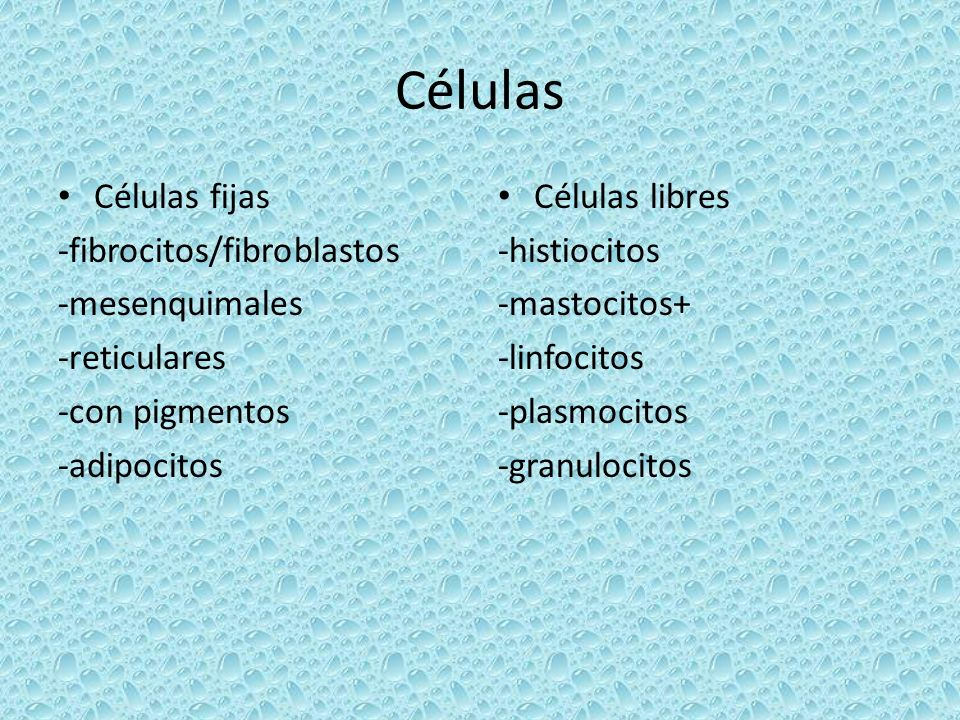 Células Células fijas -fibrocitos/fibroblastos -mesenquimales -reticulares -con pigmentos -adipocitos Células libres -histiocitos -mastocitos+ -linfoc