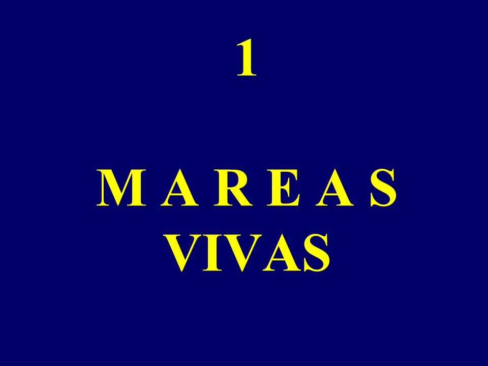 1 M A R E A S VIVAS