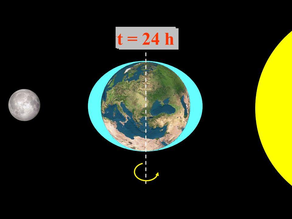 t = 0 h t = 6 h t = 12 h t = 18 h t = 24 h