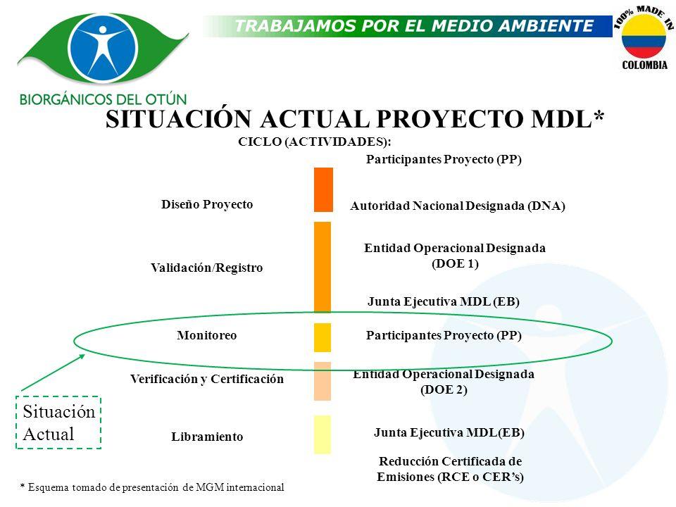 SITUACIÓN ACTUAL PROYECTO MDL* Participantes Proyecto (PP) Entidad Operacional Designada (DOE 1) Junta Ejecutiva MDL (EB) Participantes Proyecto (PP)