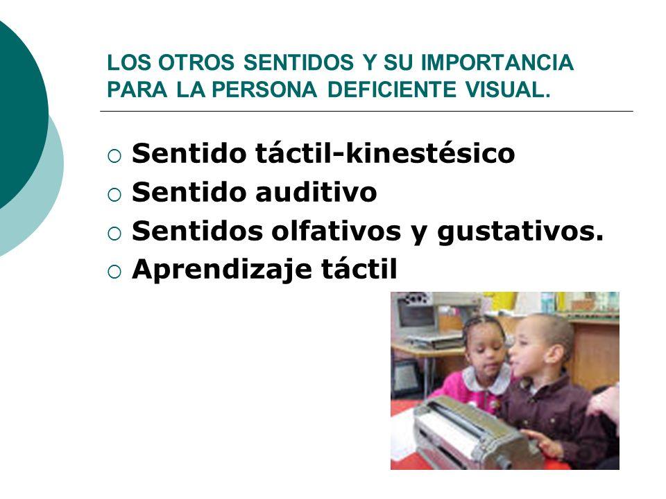 LOS OTROS SENTIDOS Y SU IMPORTANCIA PARA LA PERSONA DEFICIENTE VISUAL. Sentido táctil-kinestésico Sentido auditivo Sentidos olfativos y gustativos. Ap