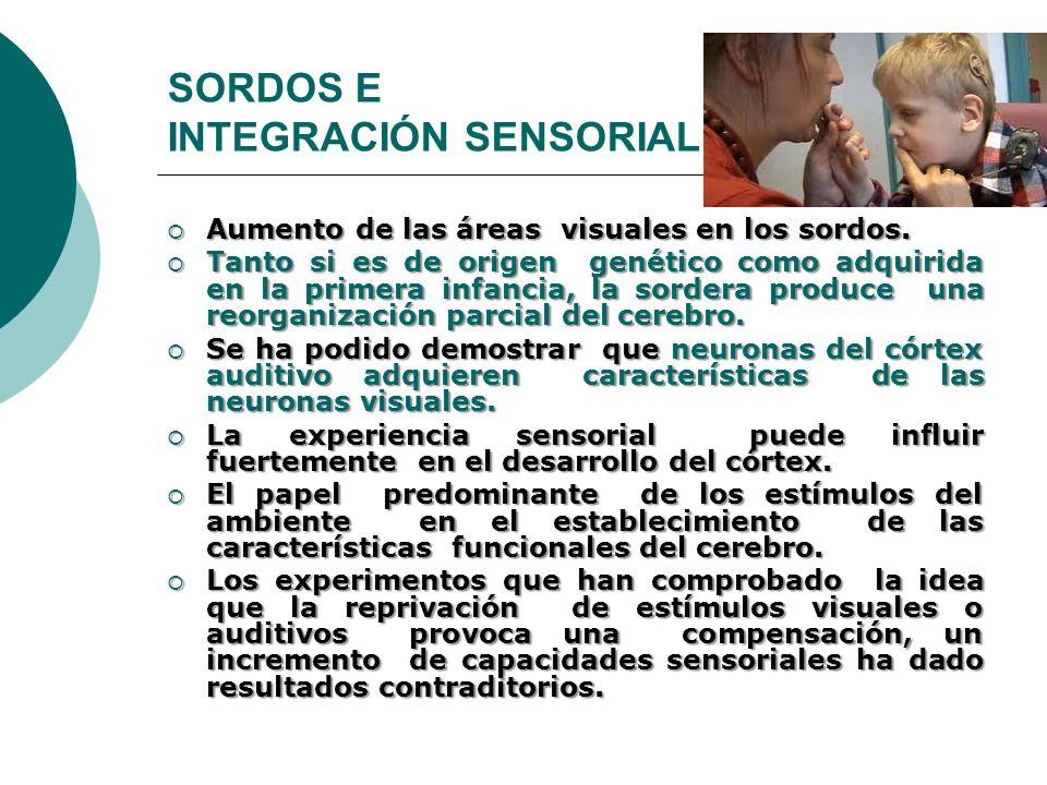 SORDOS E INTEGRACIÓN SENSORIAL Aumento de las áreas visuales en los sordos. Aumento de las áreas visuales en los sordos. Tanto si es de origen genétic