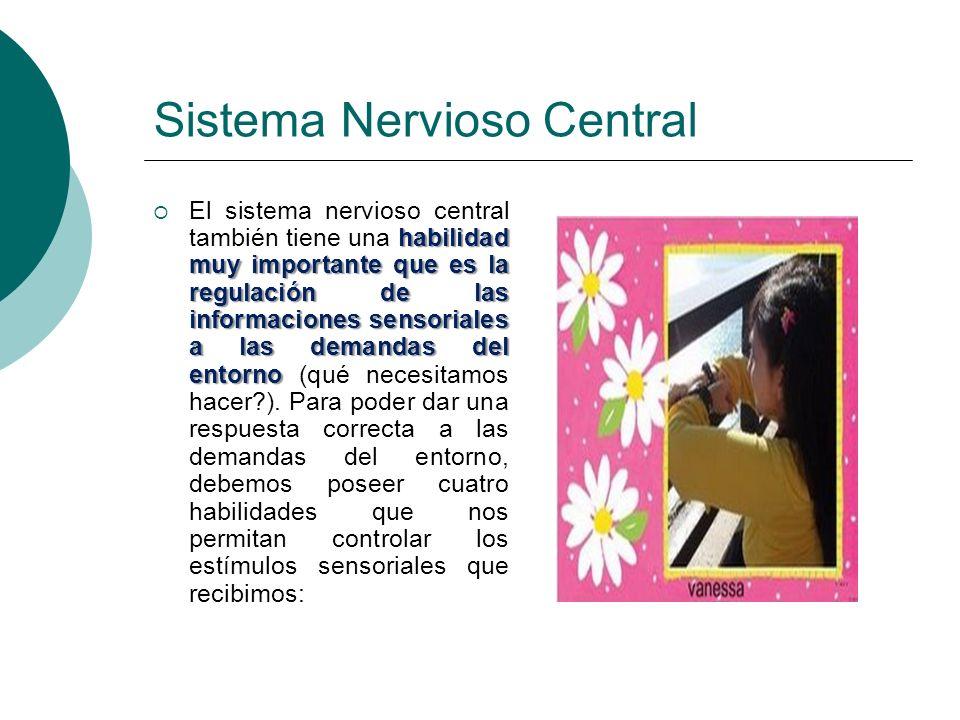 Sistema Nervioso Central habilidad muy importante que es la regulación de las informaciones sensoriales a las demandas del entorno El sistema nervioso