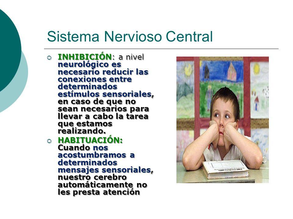 Sistema Nervioso Central INHIBICIÓN: a nivel neurológico es necesario reducir las conexiones entre determinados estímulos sensoriales, en caso de que