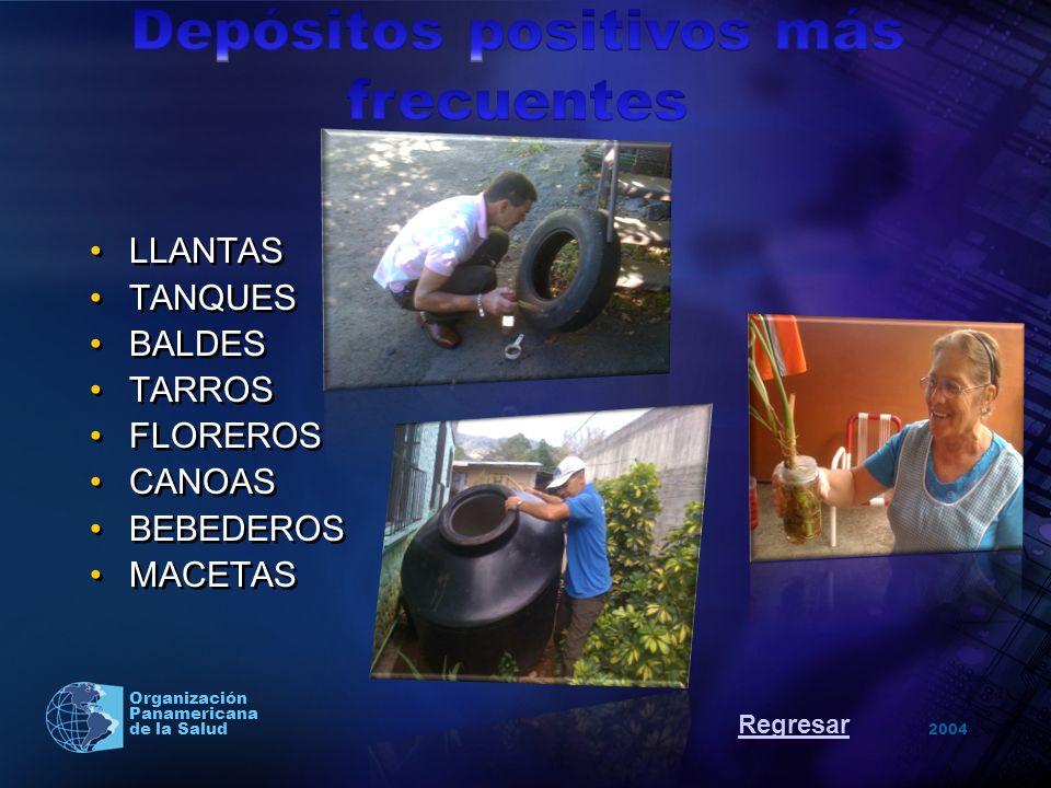 2004 Organización Panamericana de la Salud LLANTAS TANQUES BALDES TARROS FLOREROS CANOAS BEBEDEROS MACETAS Regresar