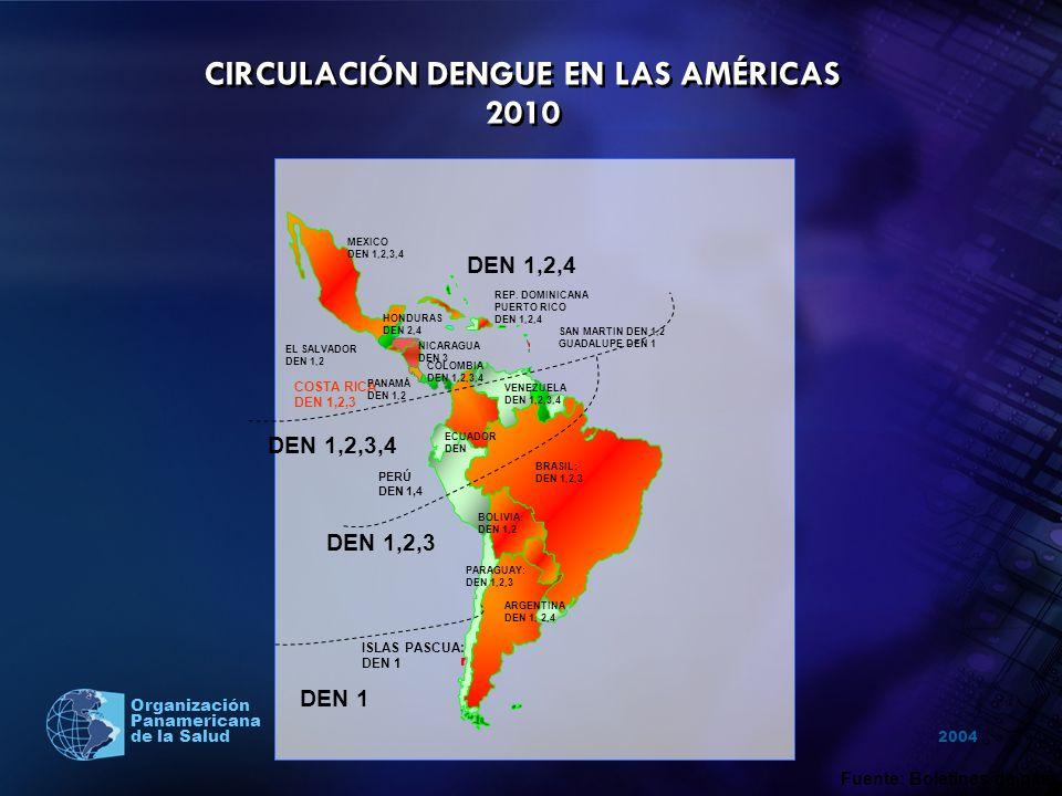 2004 Organización Panamericana de la Salud Tendencia de reducción de casos se mantuvo el resto del año.
