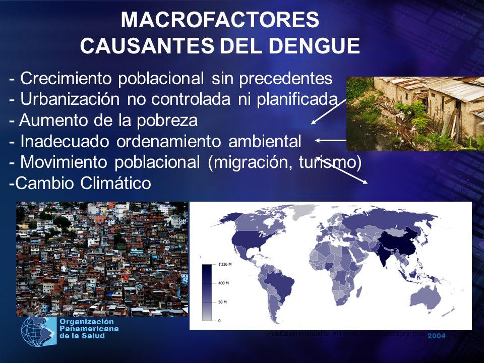 2004 Organización Panamericana de la Salud MACROFACTORES CAUSANTES DEL DENGUE - Crecimiento poblacional sin precedentes - Urbanización no controlada n