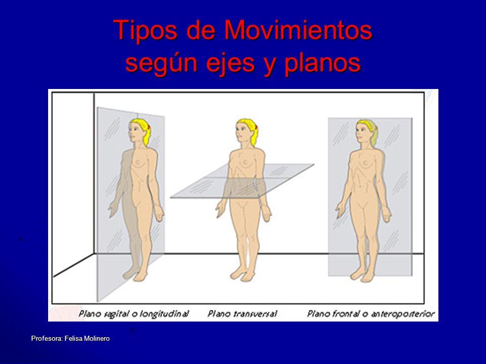 Profesora: Felisa Molinero Tipos de Movimientos según ejes y planos