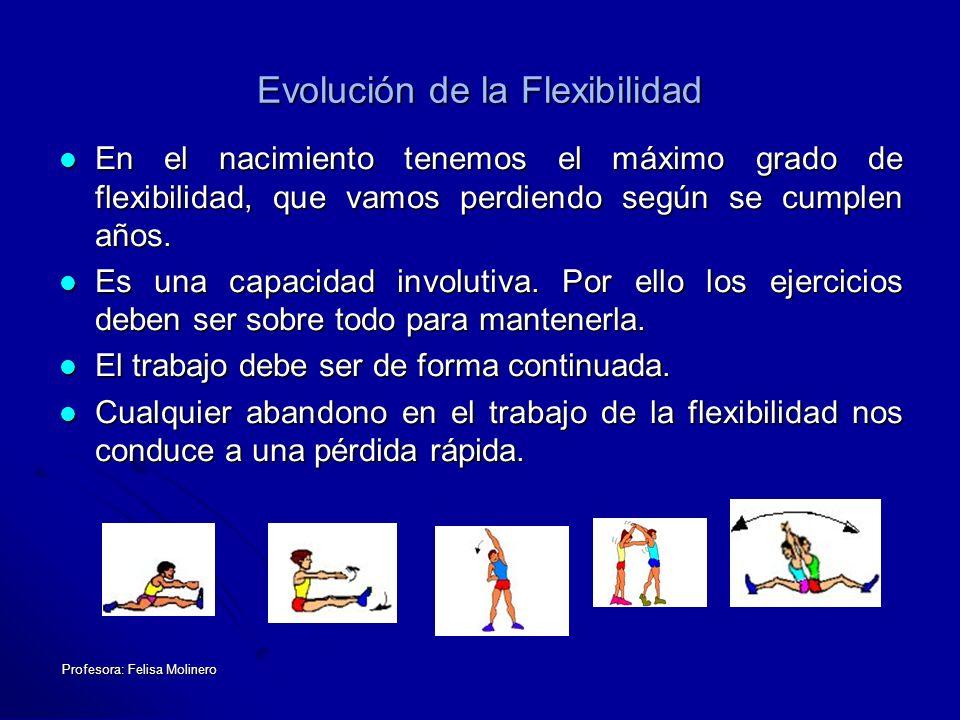 Profesora: Felisa Molinero Evolución de la Flexibilidad En el nacimiento tenemos el máximo grado de flexibilidad, que vamos perdiendo según se cumplen