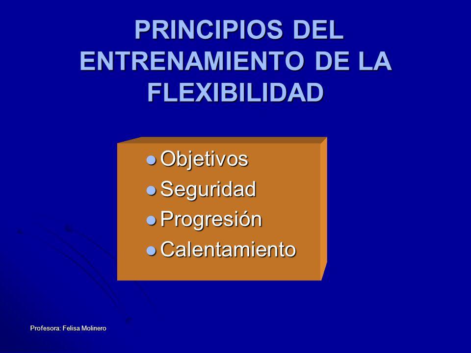 Profesora: Felisa Molinero PRINCIPIOS DEL ENTRENAMIENTO DE LA FLEXIBILIDAD PRINCIPIOS DEL ENTRENAMIENTO DE LA FLEXIBILIDAD Objetivos Objetivos Segurid