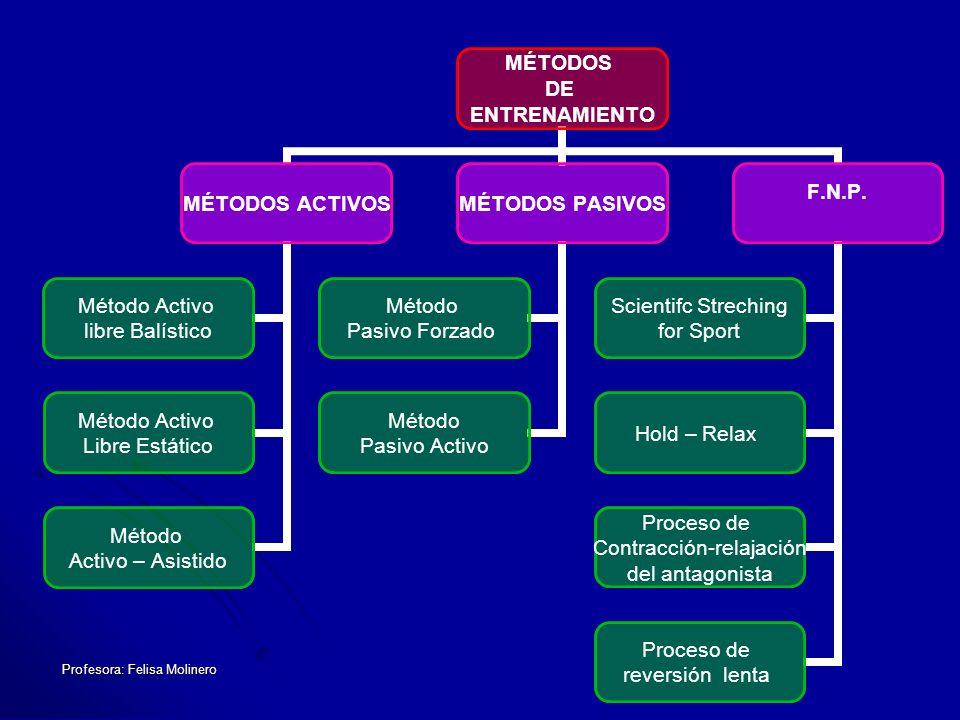 Profesora: Felisa Molinero MÉTODOS DE ENTRENAMIENTO MÉTODOS ACTIVOS Método Activo libre Balístico Método Activo Libre Estático Método Activo – Asistid