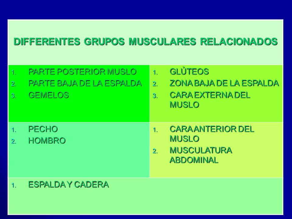 Profesora: Felisa Molinero DIFFERENTES GRUPOS MUSCULARES RELACIONADOS 1. PARTE POSTERIOR MUSLO 2. PARTE BAJA DE LA ESPALDA 3. GEMELOS 1. GLÚTEOS 2. ZO