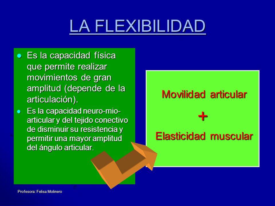 Profesora: Felisa Molinero LA FLEXIBILIDAD Es la capacidad física que permite realizar movimientos de gran amplitud (depende de la articulación). Es l