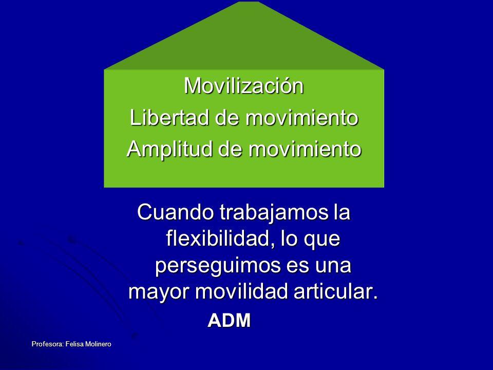 Profesora: Felisa Molinero TIPOS DE FLEXIBILIDAD Estática: Amplitud de movimiento respecto a una articulación sin poner énfasis en la velocidad.