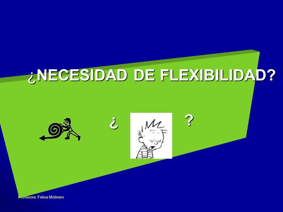 Profesora: Felisa Molinero ¿NECESIDAD DE FLEXIBILIDAD? ¿ ?