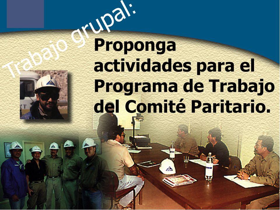 Trabajo grupal : Proponga actividades para el Programa de Trabajo del Comité Paritario.