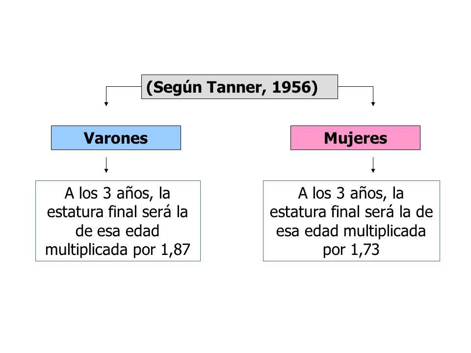 Parámetros antropométricos Cálculo de estatura (Según Watson, 1979) A los dos años tienen una estatura que es la mitad de la que tendrá como adulto A