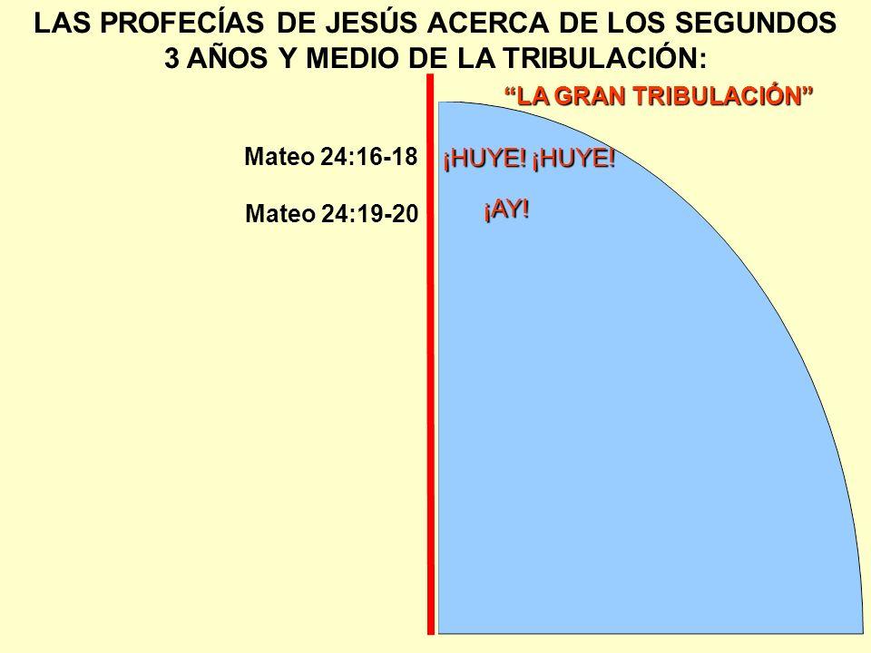 LA GRAN TRIBULACIÓN LAS PROFECÍAS DE JESÚS ACERCA DE LOS SEGUNDOS 3 AÑOS Y MEDIO DE LA TRIBULACIÓN: ¡HUYE! ¡HUYE! Mateo 24:16-18 Mateo 24:19-20 ¡AY!
