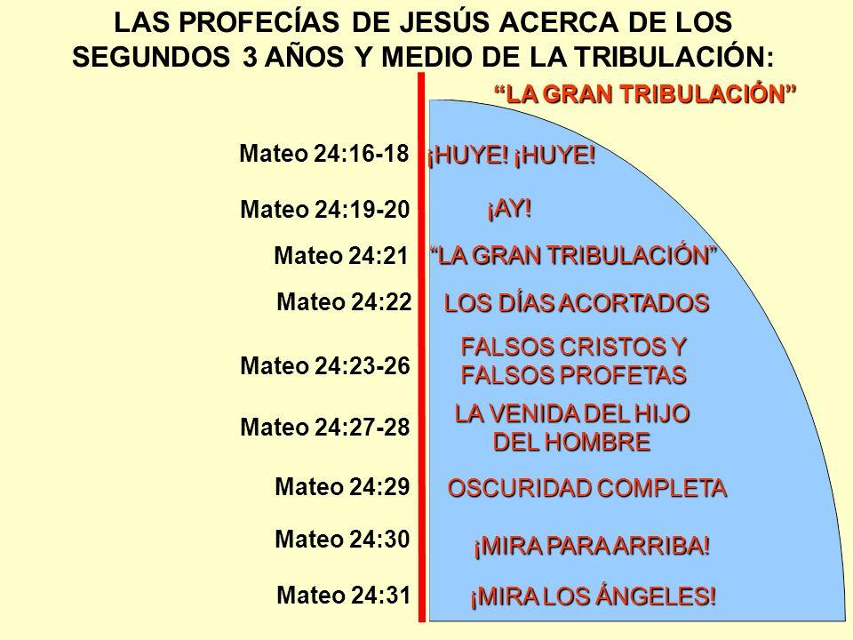 LA GRAN TRIBULACIÓN LAS PROFECÍAS DE JESÚS ACERCA DE LOS SEGUNDOS 3 AÑOS Y MEDIO DE LA TRIBULACIÓN: ¡HUYE! ¡HUYE! Mateo 24:16-18 Mateo 24:19-20 ¡AY! L