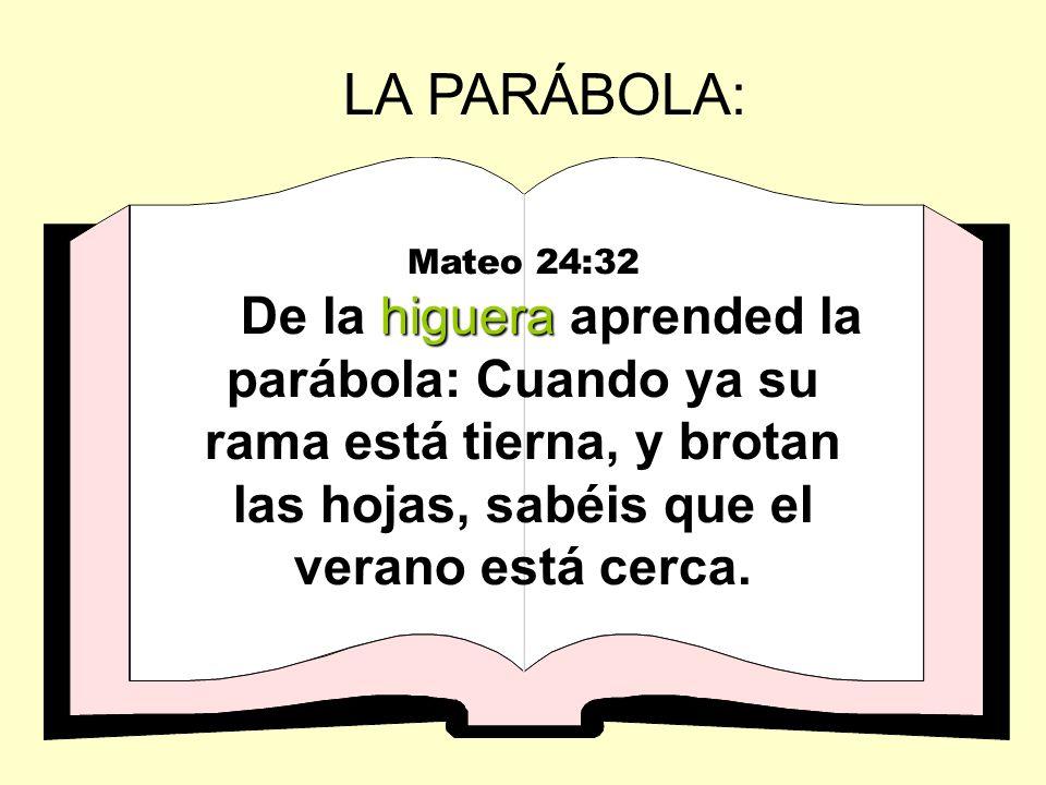 Mateo 24:32 higuera De la higuera aprended la parábola: Cuando ya su rama está tierna, y brotan las hojas, sabéis que el verano está cerca. LA PARÁBOL