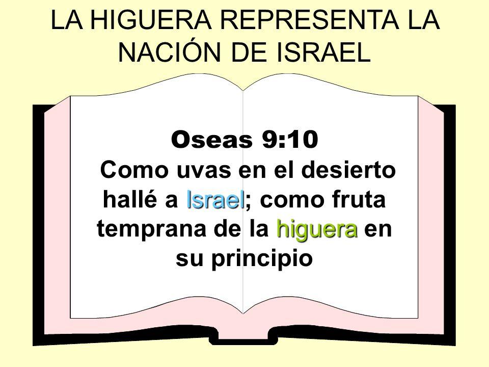 LA HIGUERA REPRESENTA LA NACIÓN DE ISRAEL Oseas 9:10 Israel higuera Como uvas en el desierto hallé a Israel; como fruta temprana de la higuera en su p