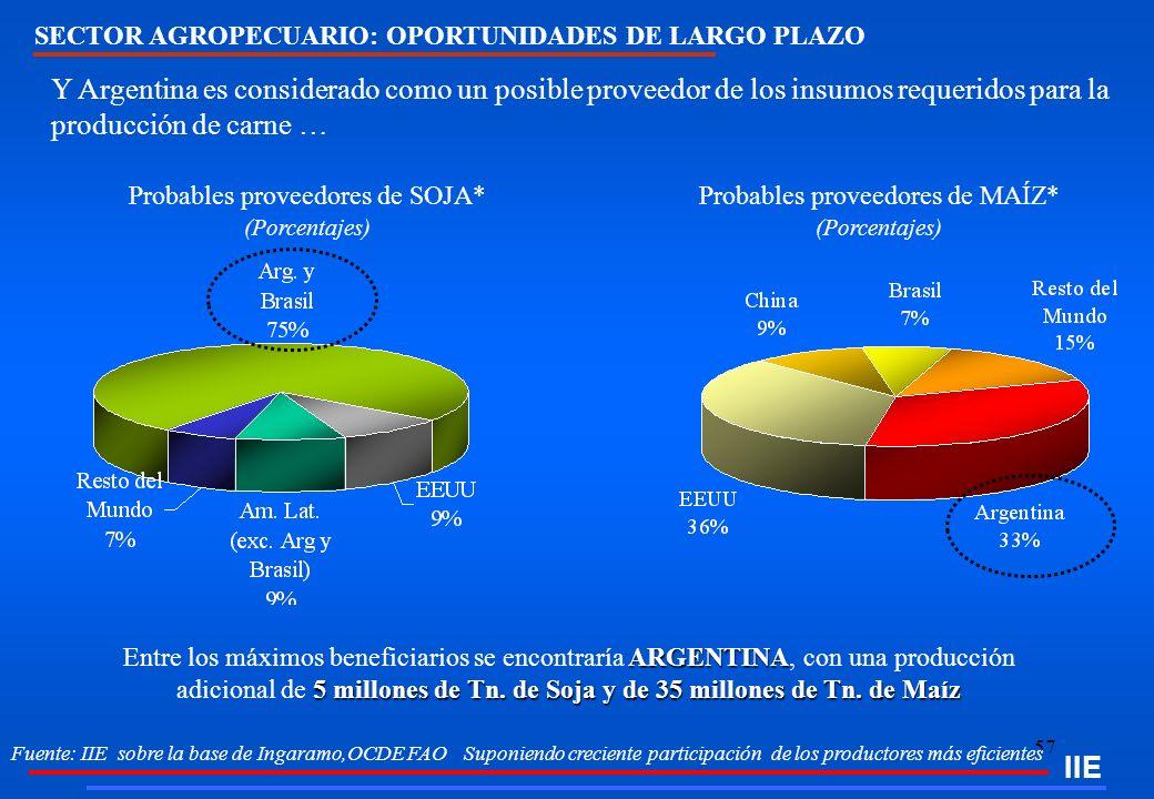 57 IIE Fuente: IIE sobre la base de Ingaramo,OCDE FAO Suponiendo creciente participación de los productores más eficientes Y Argentina es considerado