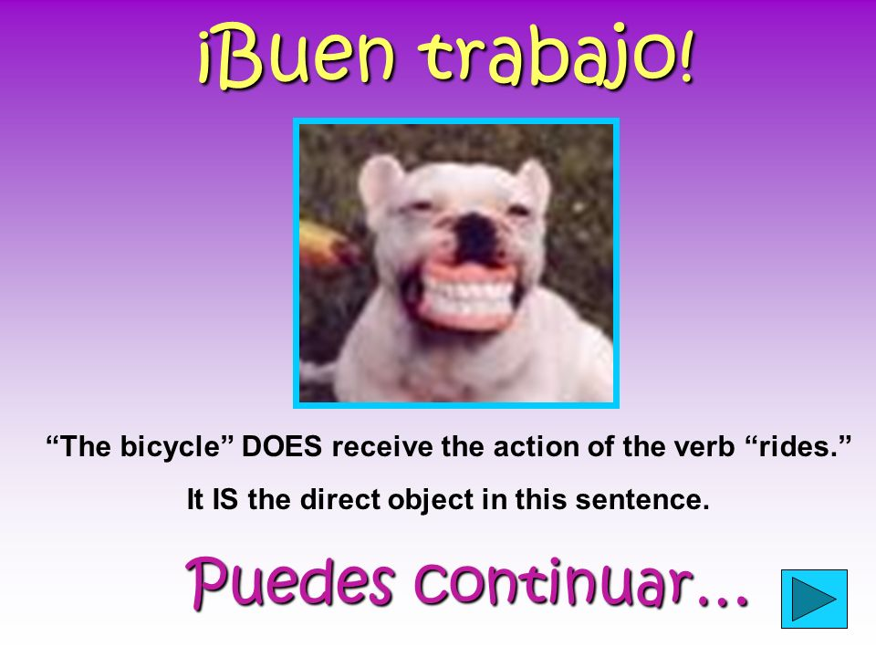 Practice… Click on the direct object in the sentence below. The girl rides the bicycle.