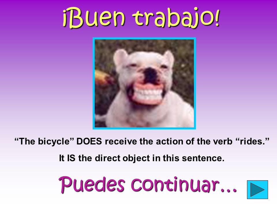 Práctica… Haz clic en el objeto directo en la oración abajo.