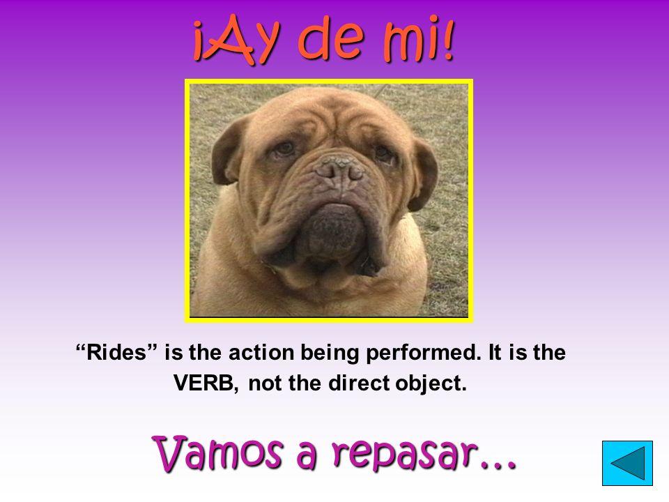 ¡Ay de mi.Vamos a repasar… Vamos a repasar… Rides is the action being performed.