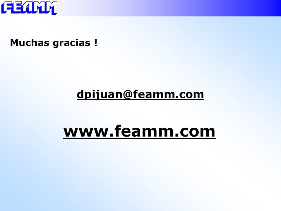 www.feamm.com dpijuan@feamm.com Muchas gracias !