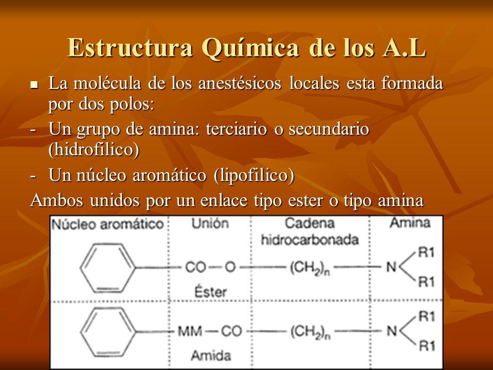 Estructura Química de los A.L La molécula de los anestésicos locales esta formada por dos polos: La molécula de los anestésicos locales esta formada p