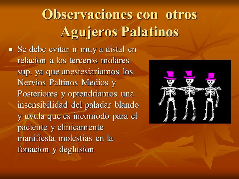 Observaciones con otros Agujeros Palatinos Se debe evitar ir muy a distal en relacion a los terceros molares sup. ya que anestesiariamos los Nervios P