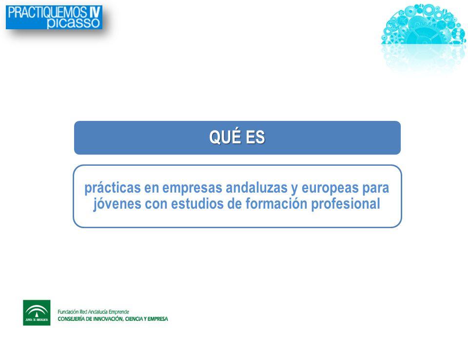 QUÉ ES prácticas en empresas andaluzas y europeas para jóvenes con estudios de formación profesional