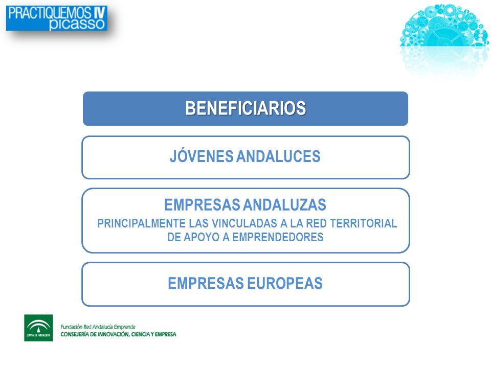 BENEFICIARIOS JÓVENES ANDALUCES EMPRESAS ANDALUZAS PRINCIPALMENTE LAS VINCULADAS A LA RED TERRITORIAL DE APOYO A EMPRENDEDORES EMPRESAS EUROPEAS